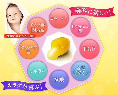 プラセンタ100は美容に関する栄養分の宝庫