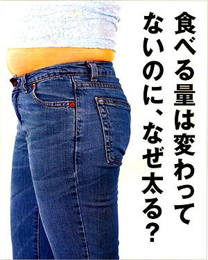 肥満を内側から根本的に対応 サントリー ラクテクト